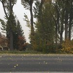 Strong wind advisory issued in eastern Idaho