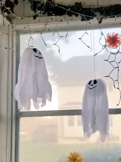 My mom is always here decorating.  Now she put up these ghosts.  👻🤣👻🤣👻🤣👻 https://t.co/3GVyxvsbaM