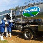 Taita Taveta farmers earn Sh52 million from milk sales to dairy firm