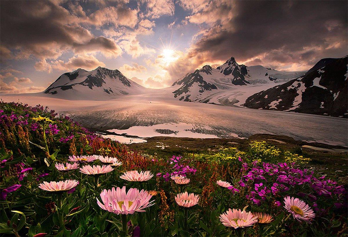 test Twitter Media - Where flowers bloom so does hope.  Lady Bird Johnson https://t.co/TH8VLKIZmE