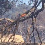 Cal Fire battling Church Fire off SR-94 near Church Road