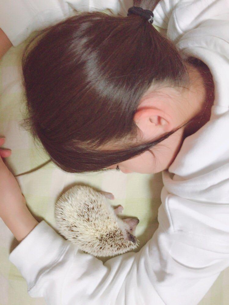 AKB48×Google+2416.1YouTube動画>1本 ->画像>100枚