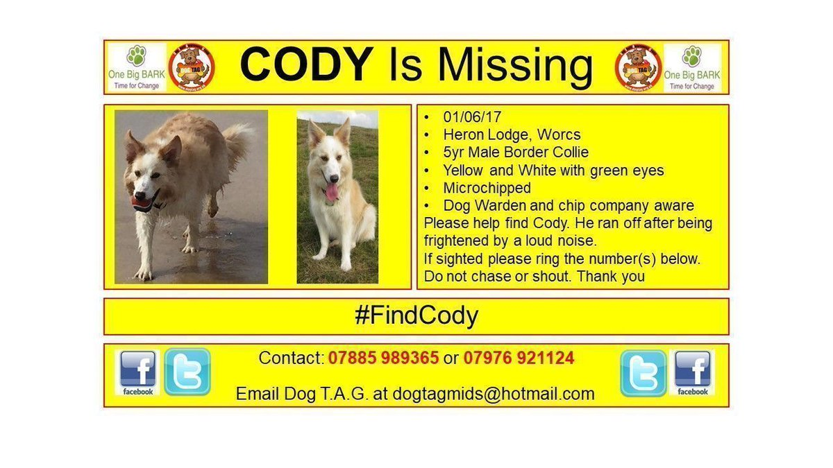 RT @DogTAGMids: #FindCody He is family. He needs to be found. 💔💖 The hurt goes so deep. https://t.co/xoFJLRBTpz