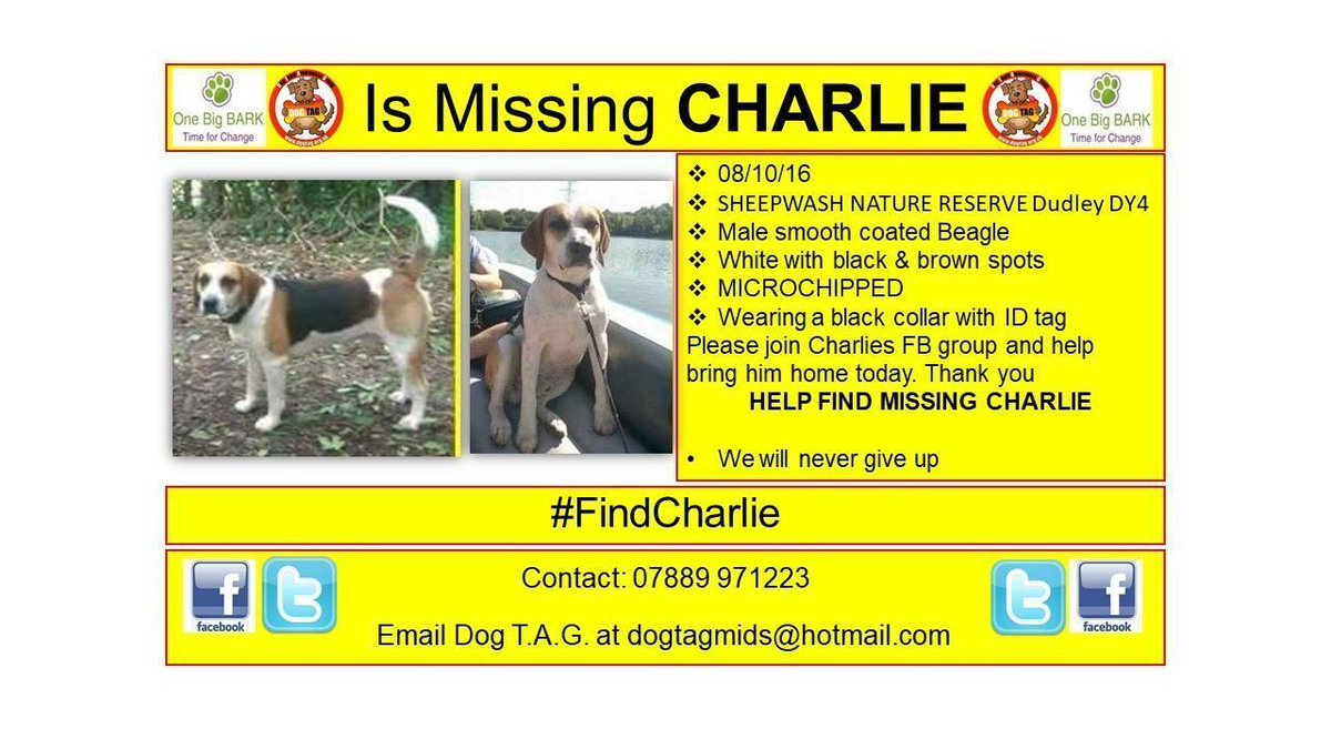 RT @DogTAGMids: #FindCharlie MISSING #scanme wearing ID tag MICROCHIPPED No news, still lost https://t.co/eEDiOjRgw7