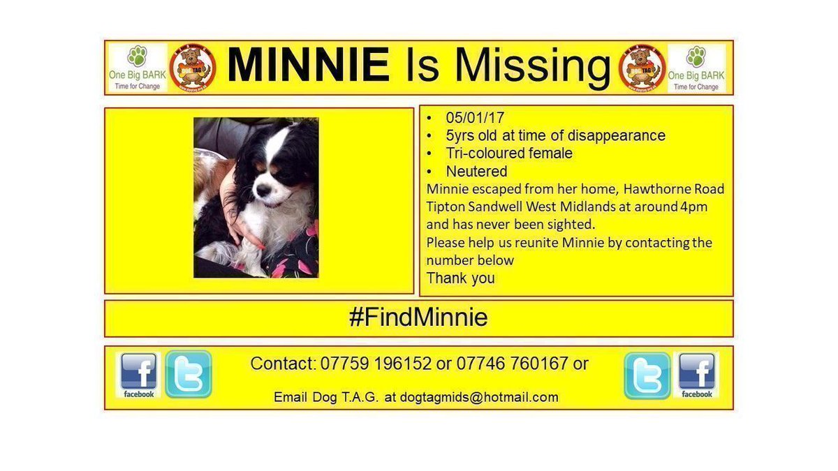 RT @DogTAGMids: #findminnie #sandwell WHERE ARE YOU MINNIE? #woofwoof #lostdogalert https://t.co/vosgGIRU5C