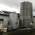 Farm vandals drain milk, puncture tyres