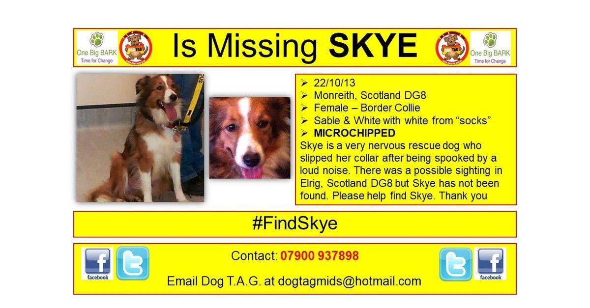 RT @DogTAGMids: #FindSkye #thunderclap 29/10 #lostdogalert https://t.co/MmgX75xbS5 https://t.co/NiPyBj8p39