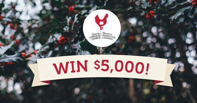 Win a $5,000 Holiday Helper