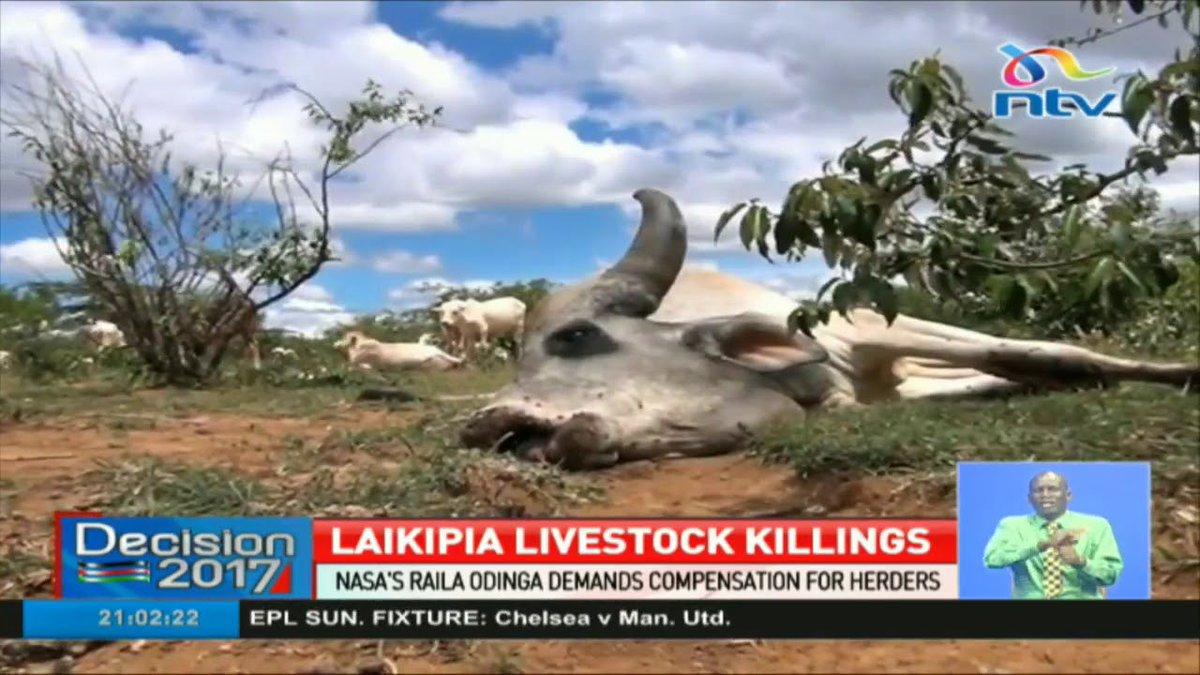 Raila Odinga demands compensation for Laikipia herders