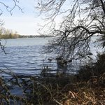 On Detroit River, humans lead nature's rebirth