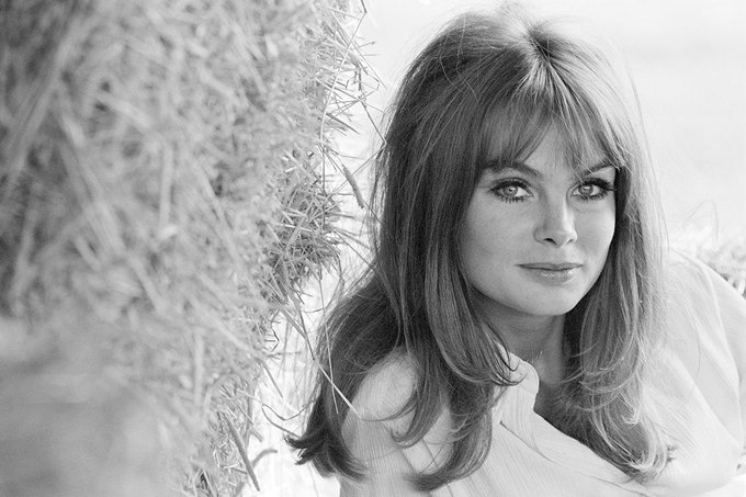 Happy Birthday to Jean Shrimpton! Photo taken at her parents farm in Buckinghamshire, circa 1963.