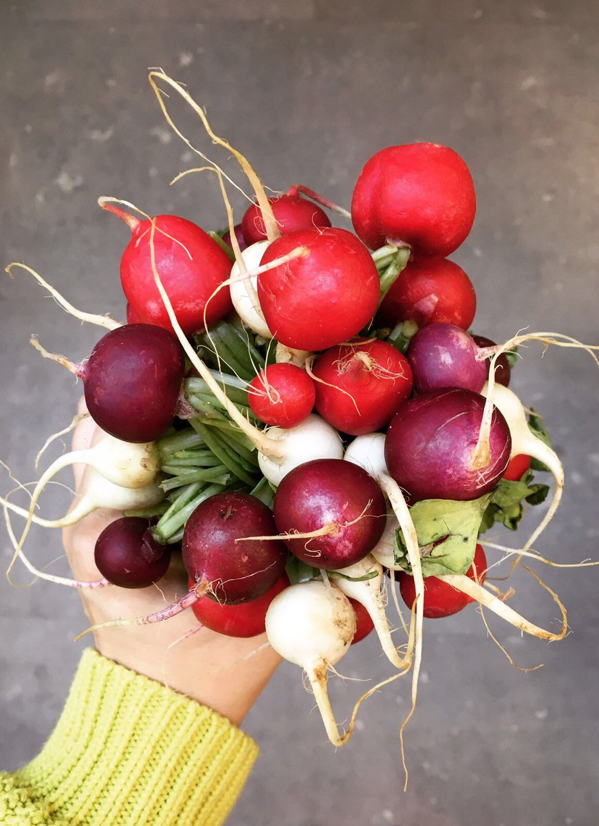 Anyone can buy flowers - it takes a really special person to buy a bouquet of radishes. https://t.co/pPtzGhV4ZA