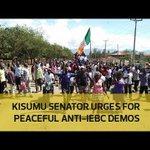 Kisumu senator urges peaceful anti-IEBC demos