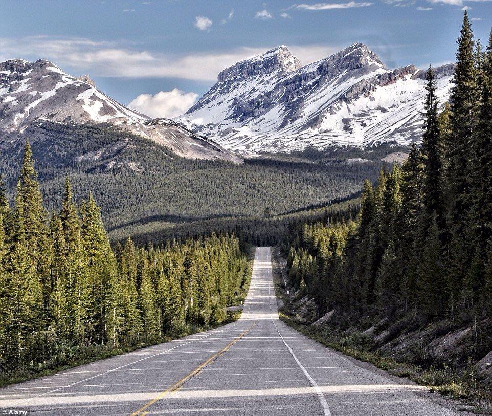 Icefields Parkway, Alberta, Canada   Love the Canadian Rockies! https://t.co/PBbknBdXcG