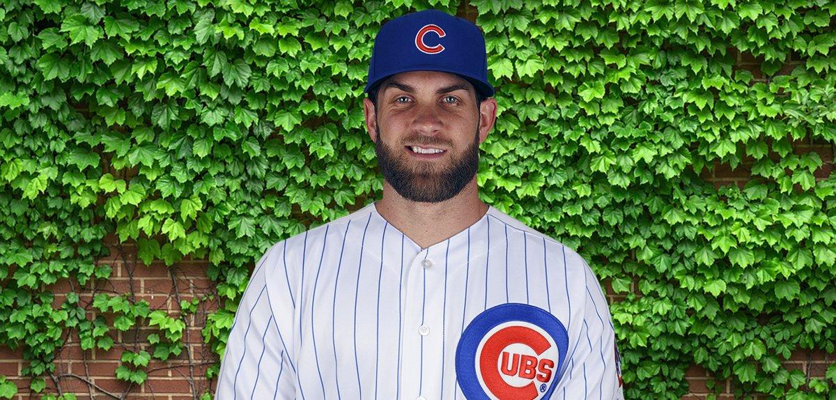 Bryce Harper  The Cubs' right  bryce harper