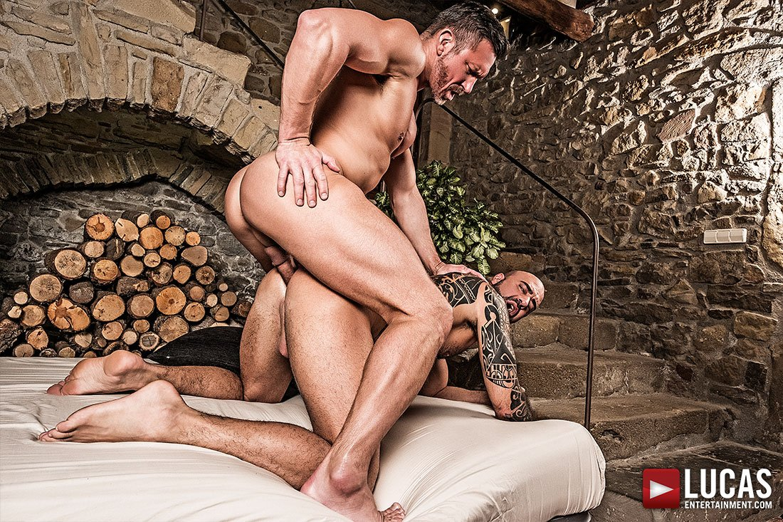 What a nice ass ��  https://t.co/PEB2bfcQNo - @AngeloDiLuca1 @LucasEnt #deepfuck #gay #rawcock #lucasmen https://t.co/YnRJ8TU40q