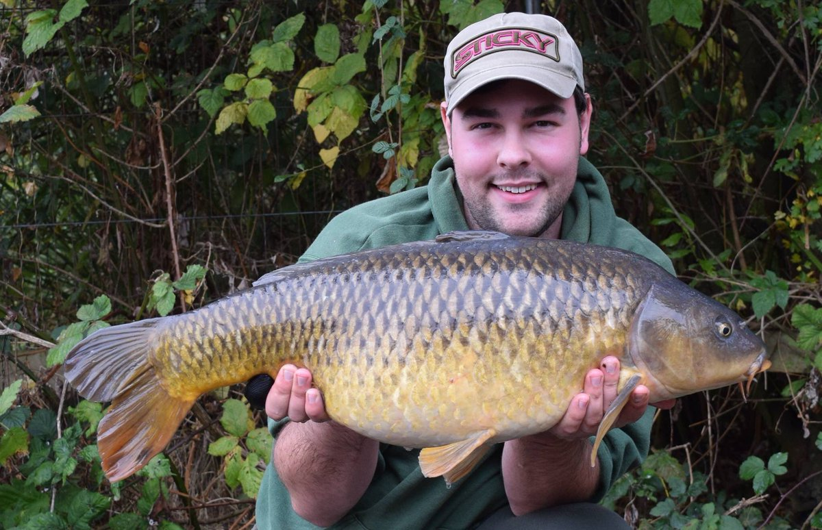 Lovely mint 1<b>6lb</b> 8oz common caught on a hinge and a pineapple and n'butyric pop up #sticky #c