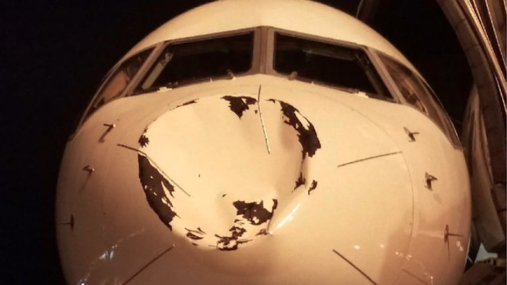 Small UFO obliterated by Oklahoma City's chartered plane: https://t.co/vIEzZ9LUwZ https://t.co/fJZtMo9x2L