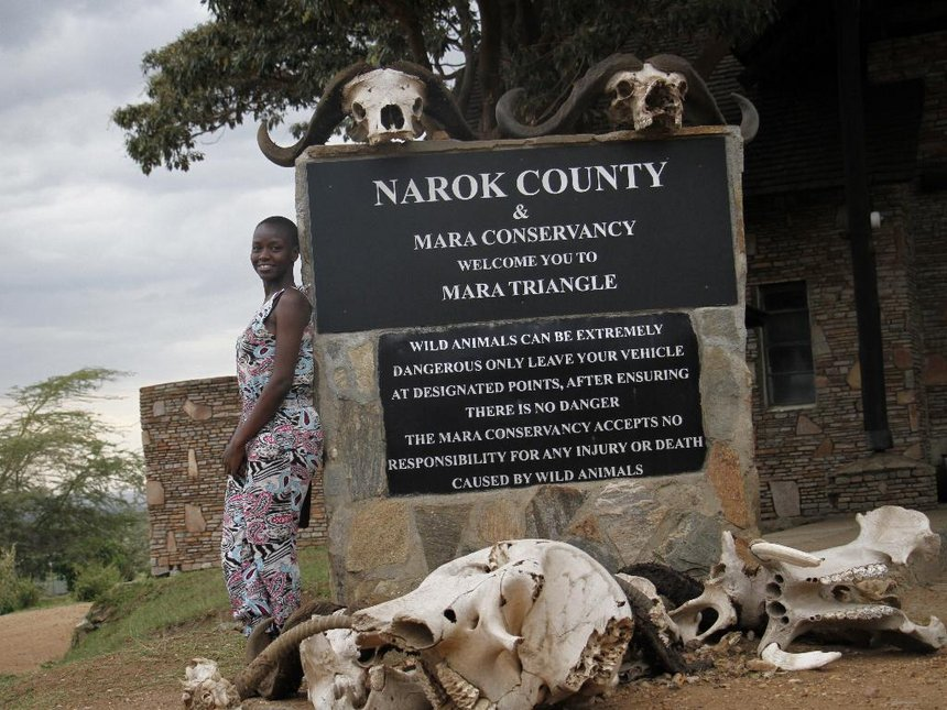 Domestic Tourism: Wild thoughts in the Mara, Africa's best national park