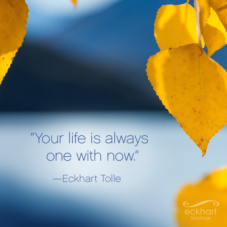 Your life is always one with now. ~Eckhart Tolle https://t.co/mmQnOkUTuf