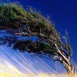 TMA warns of strong winds in southern coast of Tanzania