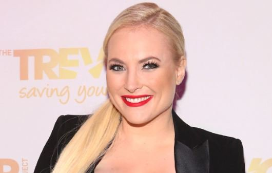 Meghan McCain is engaged and enjoying the View: