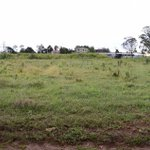 Kiambu land prices fall as County moves to regulate land use to boost food security