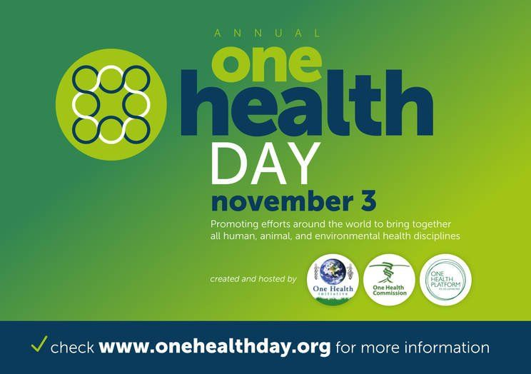 test Twitter Media - Nov. 3 is #OneHealthDay - one of the most important #GlobalHealth campaigns today. Spread the word... https://t.co/V1IQFOTgL5 @OneHealthCom https://t.co/zMraSgnMvk