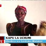Ukulima wa tobako eneo la Malakisi kaunti ya Bungoma