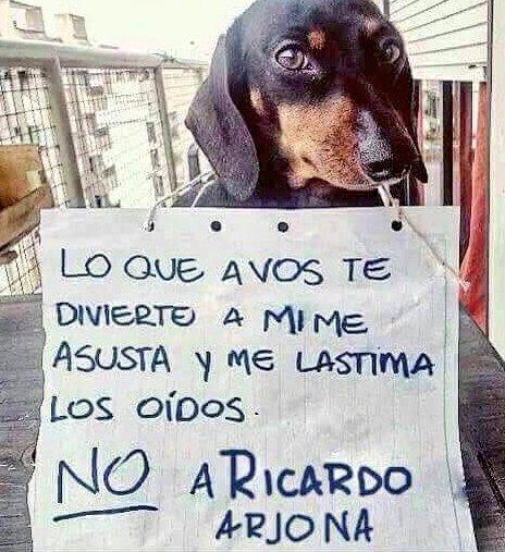 También los animales tienen derechos...�� #BuenViernes #FelizFinde https://t.co/BW6AY0ErTL