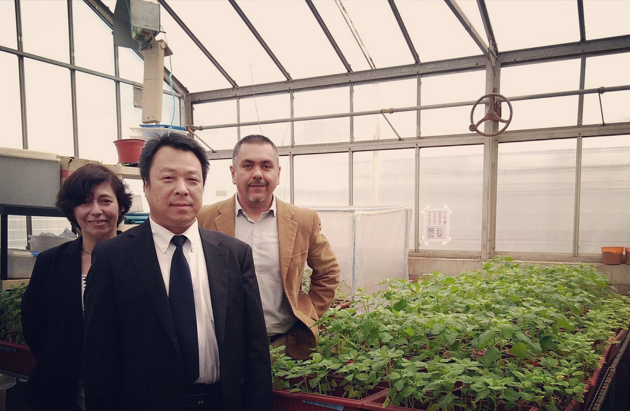 Hoy recibimos a Zhan Fu Yang de la Cámara de Comercio de #Hebei #China para compartir experiencia de I+D+i en #quinoa en la @ucatolica https://t.co/uaXWTSuIaL