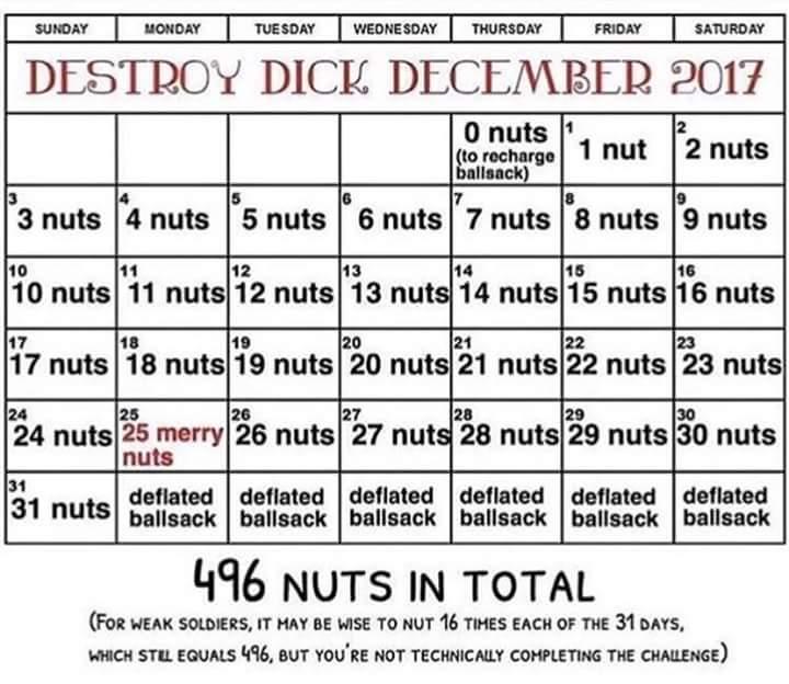 RT @BasedGoshujin: Once No Nut November is done, it's time for Destroy Dick December https://t.co/nKbQA8YnZD