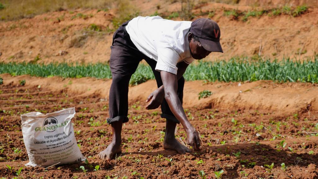 À Madagascar, les paysans se plaignent du manque d'accès à la terre