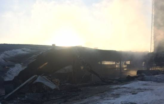 More than 100 animals dead after fire at Alberta dairy farm