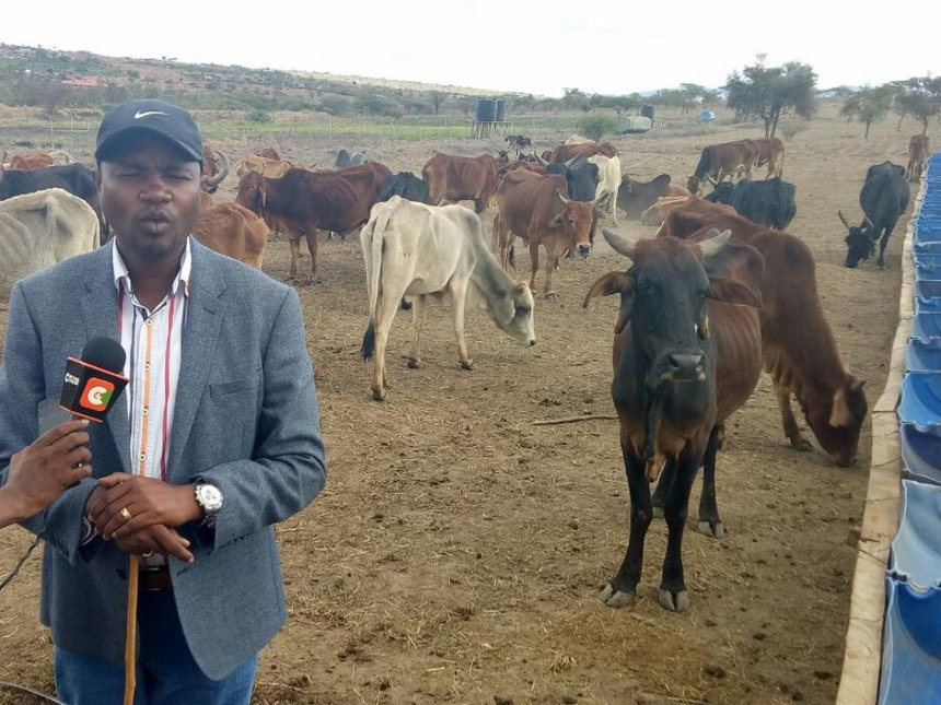 Resign over Laikipia cattle shooting, Matiang'i and Boinnet told