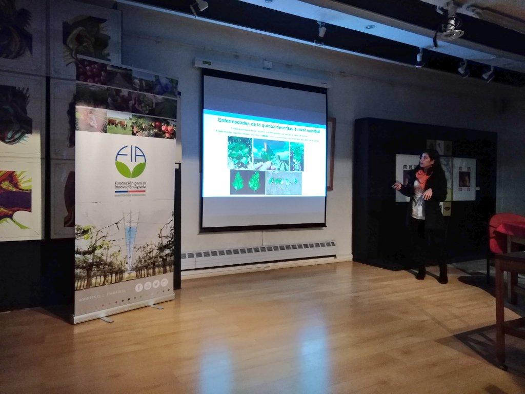 Claudia Rojas de @QuinoaLab @ucatolica hablando de caracterización de hongos de la #quinoa de #Chiloe https://t.co/mdHih48n8Z