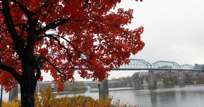 9 Spots for the Perfect Instagram Photo this Fall