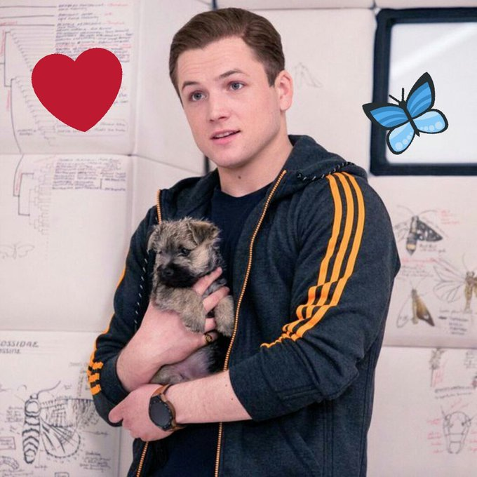Happy Birthday, Taron Egerton!     You very cute! :3