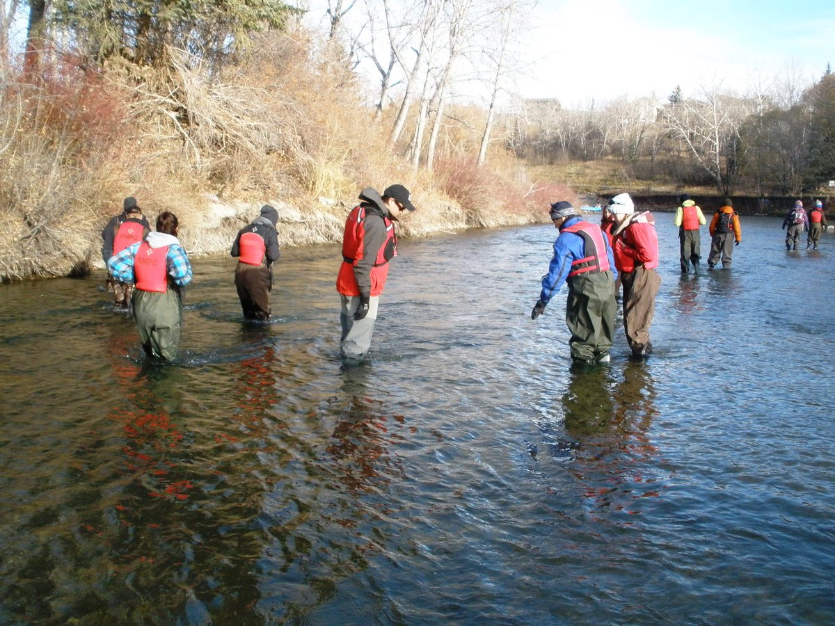 test Twitter Media - Our annual Brown Trout Redd Count in Lower Elbow River is on Fri Nov 10th -- hardy scientists, Uni students, and volunteers will walk & raft in the Elbow looking for trout nests (redds). Fingers crossed for warmer weather #fish #citizenscience https://t.co/dgkmgWY8Ie
