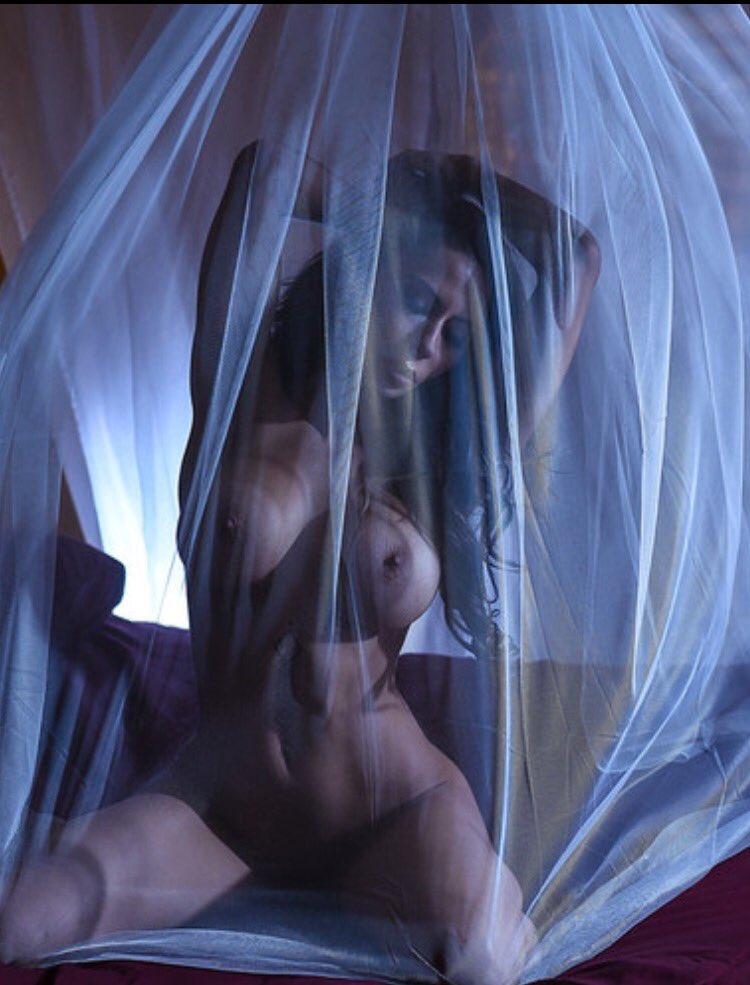 I hide my true feelings just beyond the veil.... ehWO3VsrrL