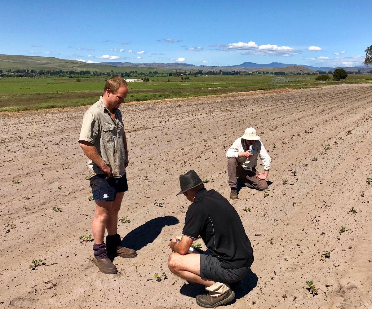Southern Tas @eemuir @Serve_Ag agronomists Sam...