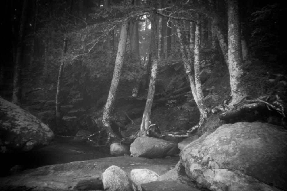 Art review: Exhibit explores Thoreau's relationship with Maine