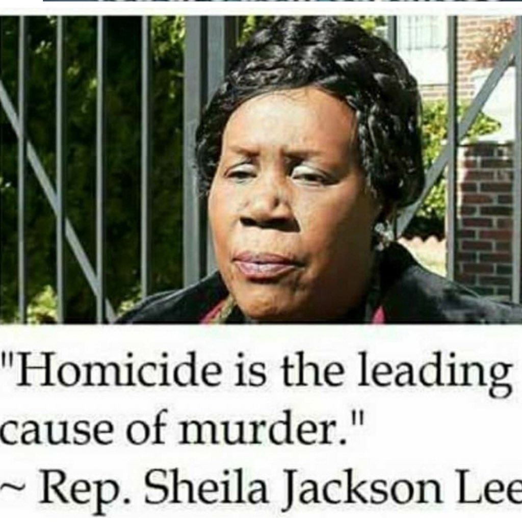 @SparkleSoup45 That's funny because Rep. Sheila Jackson Lee usually makes profound statements. ������ https://t.co/ZYEf71w1go