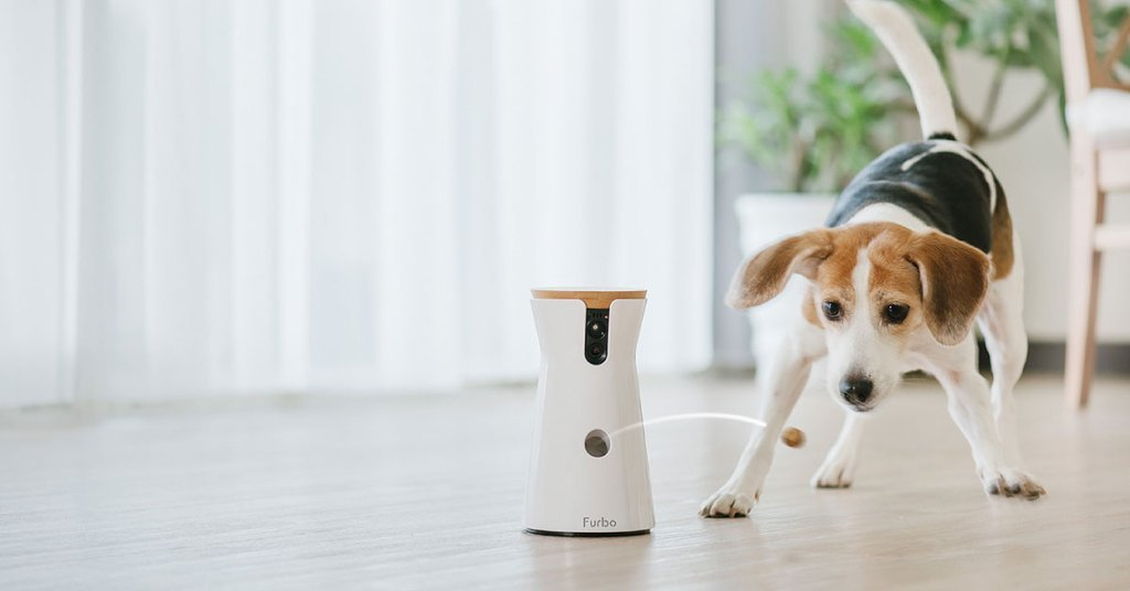 Furbo unveils treat-tossing dog camera with smart alerts, like when your dog is pacing https://t.co/i8r1wNYTW7 https://t.co/dIZTFJNvDl