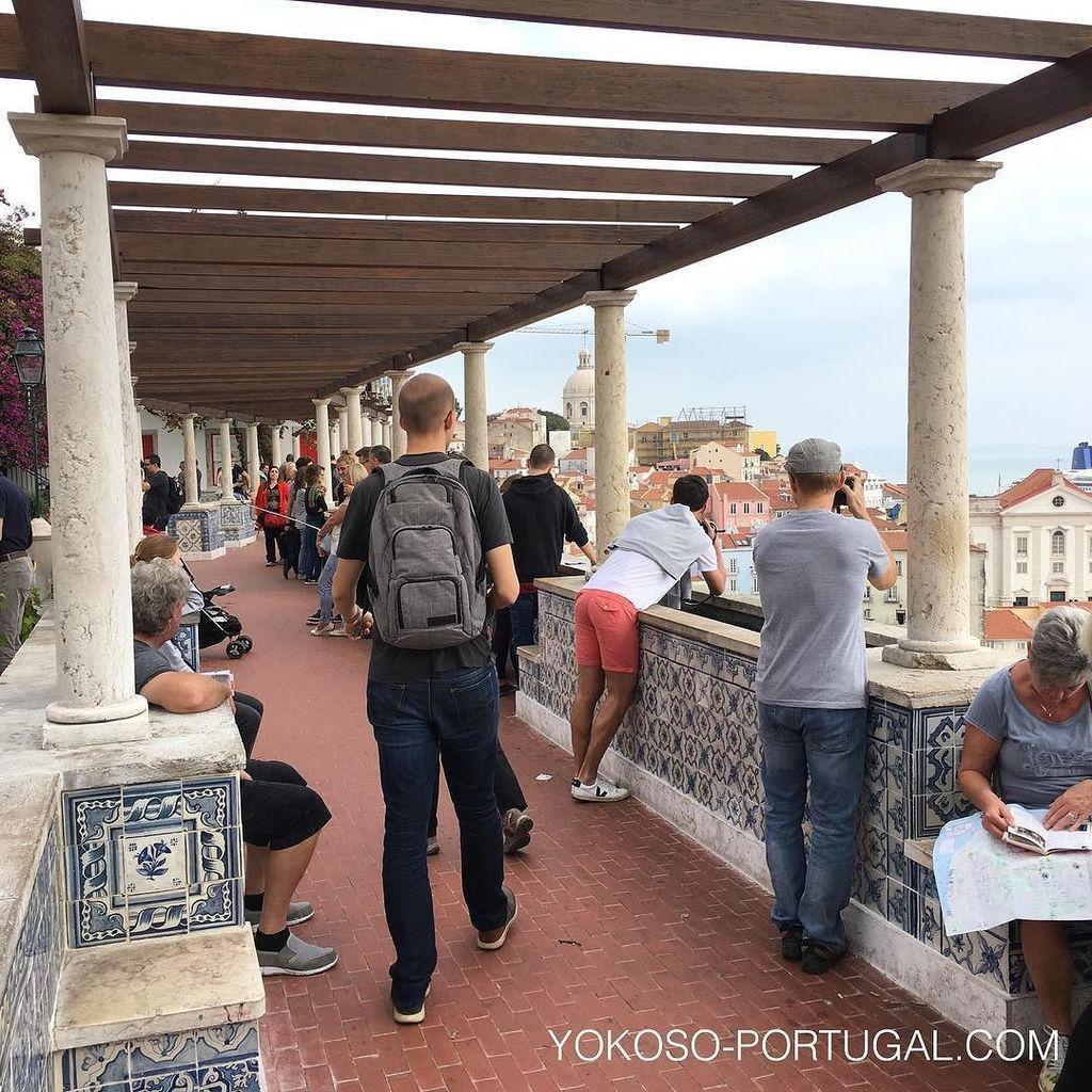 test ツイッターメディア - アンティークのアズレージョがきれいになった、リスボンのサンタ・ルジア展望台。アルファマ地区一望できるとっておきの場所。 リスボン #ポルトガル https://t.co/XzpG12Ecc2