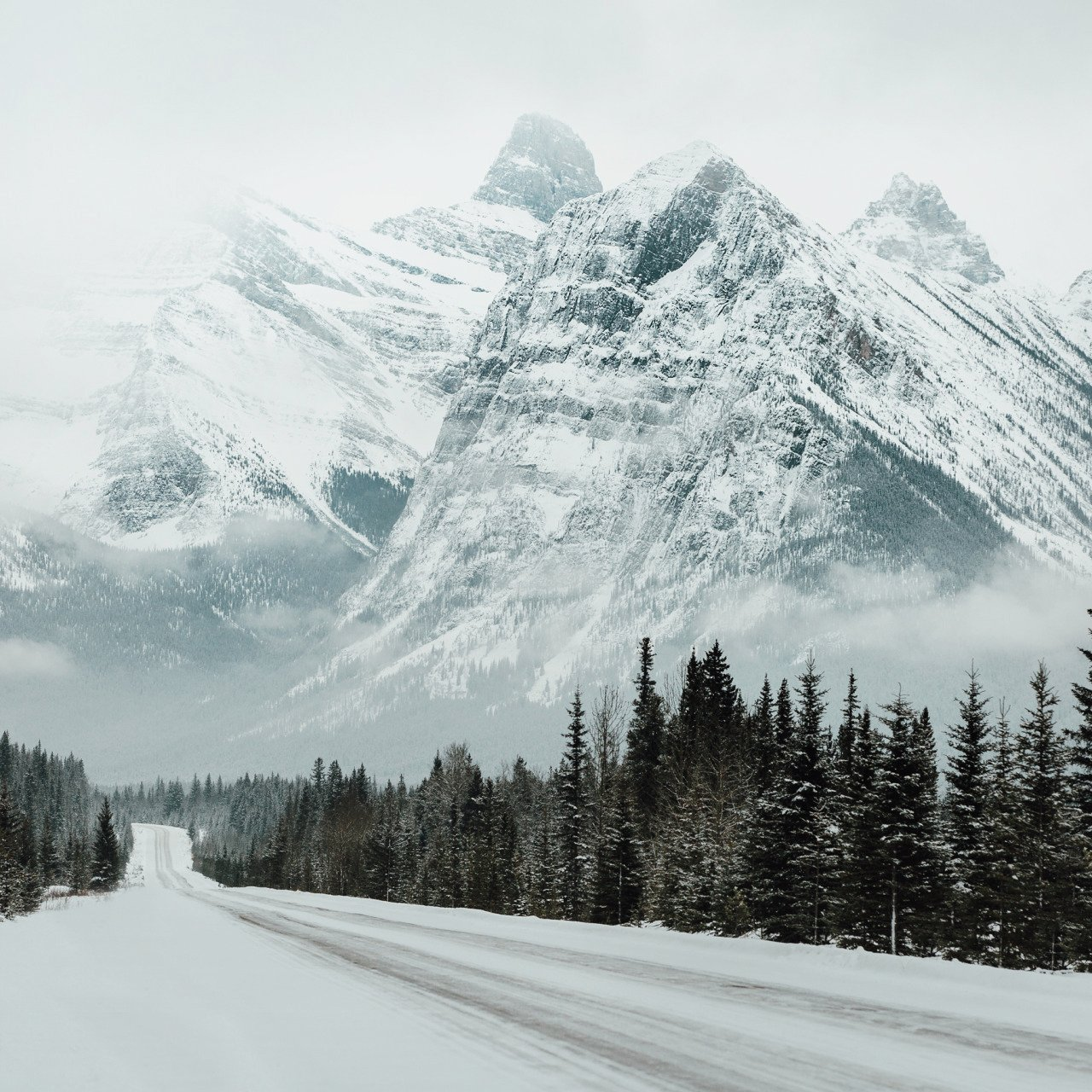 Icefields Parkway �� https://t.co/FcInMj4AEx