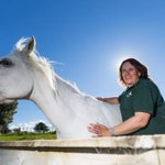 Mental health worker says horses read body language of troubled people
