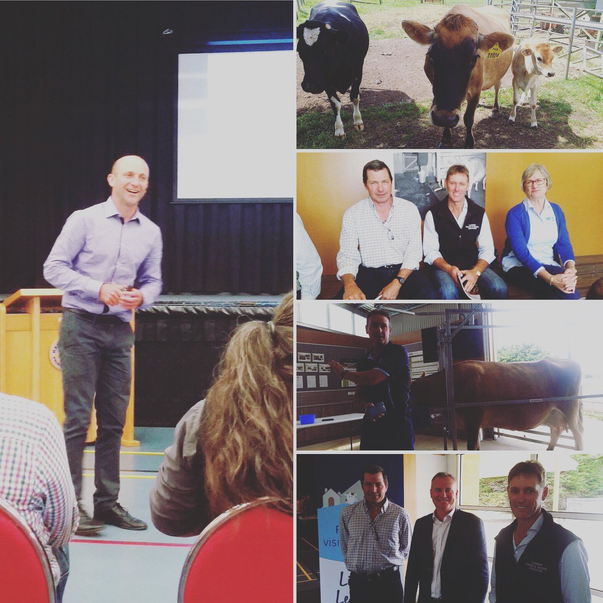 DairyTas AGM at Hagley in #northerntasmania...
