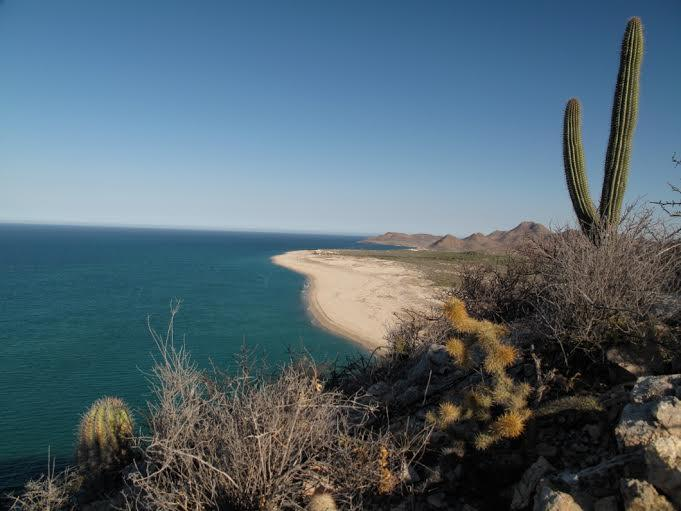 Cabo Pulmo Eco Resort East Cape, MLS# 17-2357 5788.88 sqft $1,125,000 USD More info: https://t.co/3TV2xcG41T https://t.co/2yCtOSvxf5