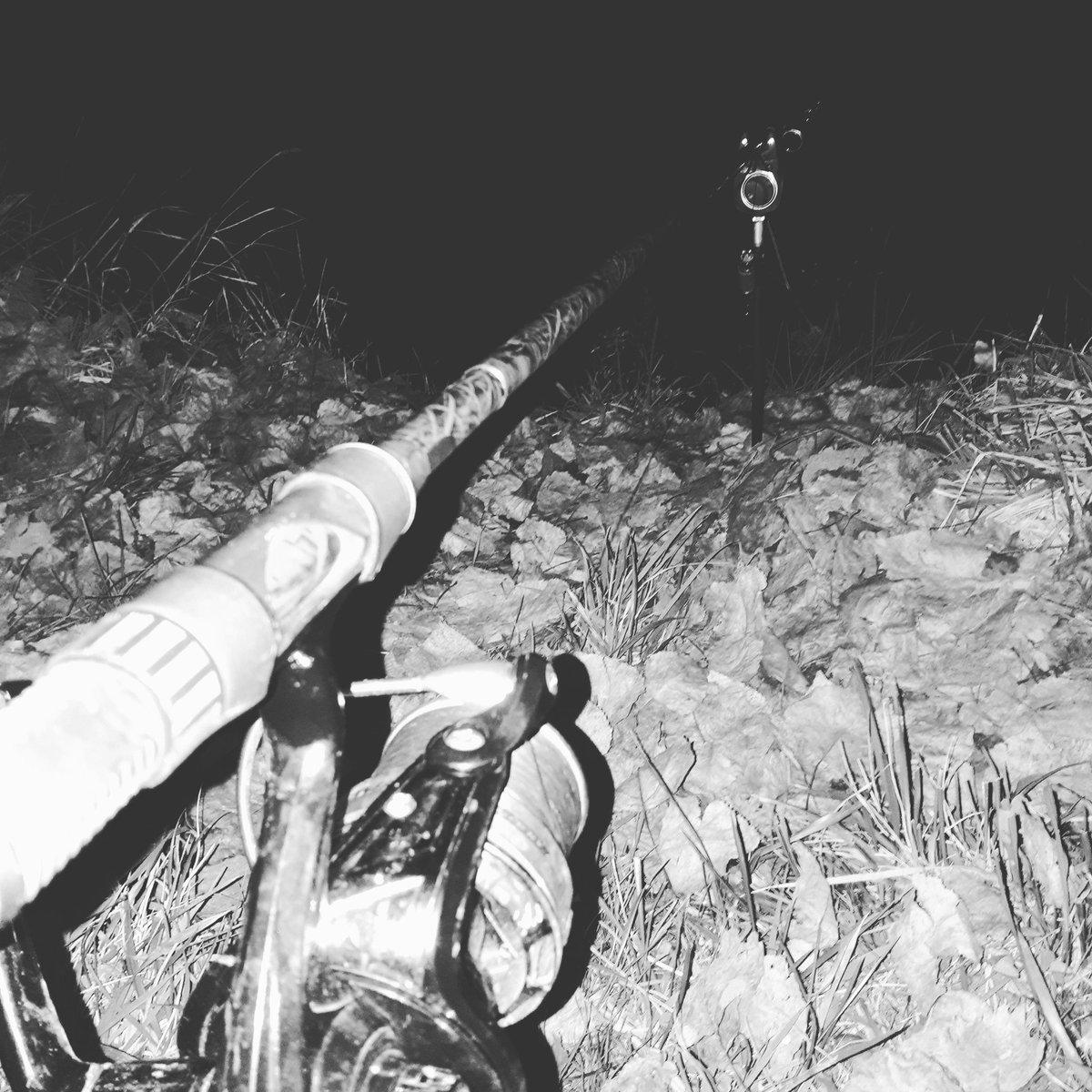 Petit résumé de la nuit dernière #Alone #CarpFishing #peche #<b>Lifestyle</b> https://t.co/FFGP2A